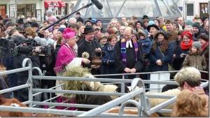 Segnung Schafe